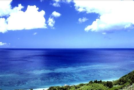 Amami Island - nature paradise